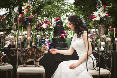 Ślub w stylu Alicji w Krainie Czarów, Alicja w Krainie Czarów wesele, Alice in Wonderland